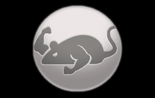 Cat Mouse Logo