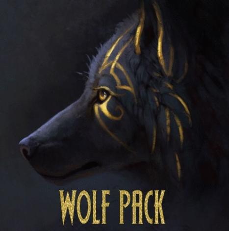 Install Wolf Pack Kodi Addon